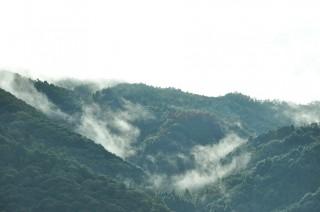 2011/10/06 8:05 雨あがりの朝