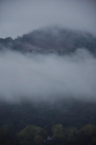 2011/11/19 16:05 雨の合間に