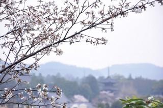 12/04/11 14:25 雨の黒谷