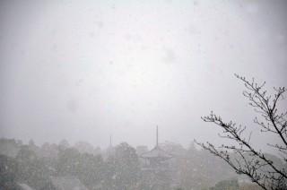 2012/12/10 9:43 初雪