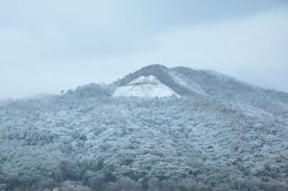 2013/12/29 初雪